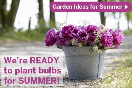 bulbs are easy summer gardening project ideas